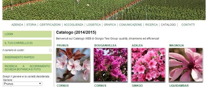 Catalogo WEB Giorgio Tesi