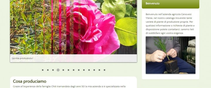 Genovesi Ylenia Azienda Agricola – Catalogo Online