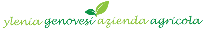 agencygrass_logo