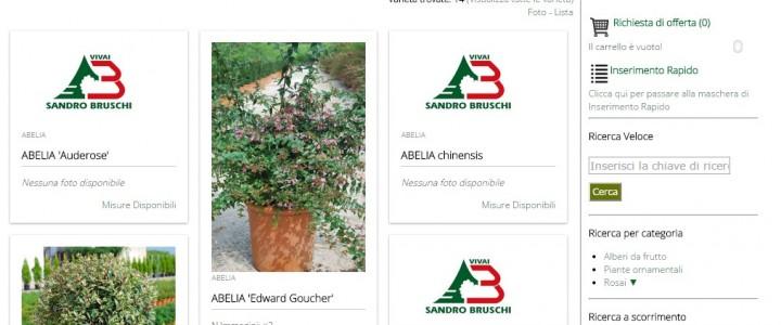 Catalogo WEB Vivai Sandro Bruschi
