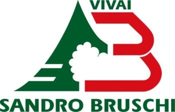 marchio_bruschi
